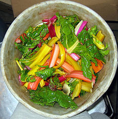 compost squared circle (by colin j.)
