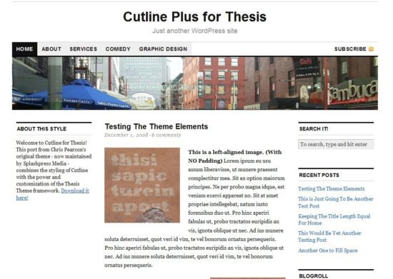 11 Best and Free Thesis Skins For Thesis Theme