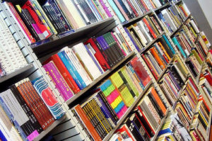 9 WordPress Themes for Selling Books Online